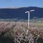 Sistemas anti heladas Orchard-Rite
