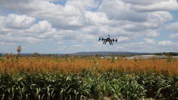 Agricultura 4.0, transformación digital de la agricultura.
